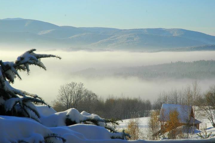 Zimowa pełnia z Jogą – moc bycia
